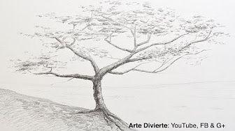 Como Dibujar Un Arbol En 3d En Una Pared Youtube Tree Drawing Tree Drawings Pencil Tree Sketches