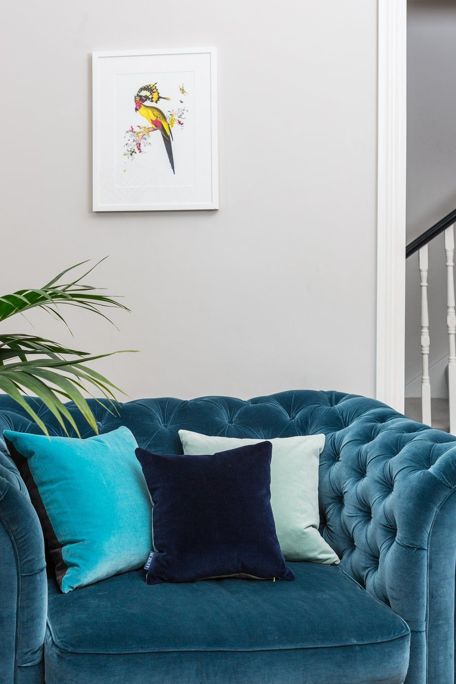 Terrific Luxe 39 Velvet Cushions In A Living Room On A Small Teal Theyellowbook Wood Chair Design Ideas Theyellowbookinfo