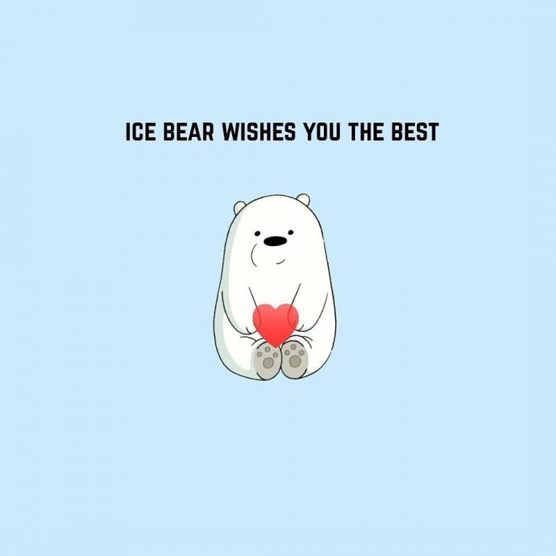 10 Top Ice Bear We Bare Bears Wallpaper FULL HD 1080p For PC Background 2018 free download pinburcu g on illustrations with the bear pinterest bare 800x800 from pixel-creation.com