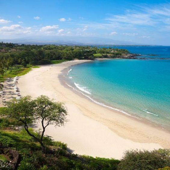 Best Beaches Big Island Hawaii: Hawaii's Five Best Winter Beaches