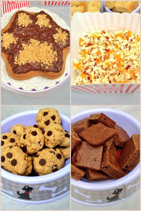 Dessert Snacks For Dog Birthday Party Please Celebrate Your Dogs