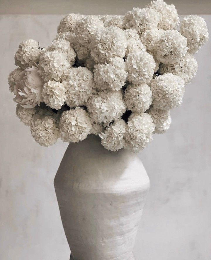 White Hydrangea Flower Arrangement In 2020 Flower Arrangements Hydrangea Flower Arrangements Floral Wedding