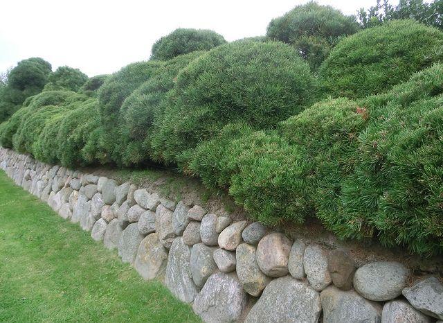 Friesenwall Bepflanzen friesenwall gardens and garten