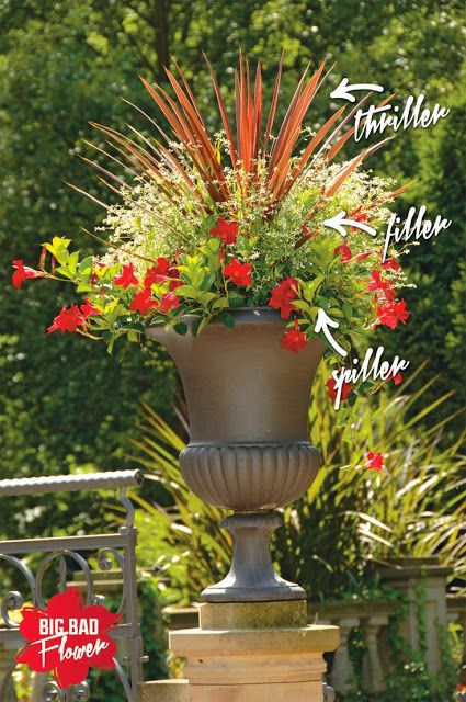 Container Flower Gardening Ideas Lots Of Different Combos