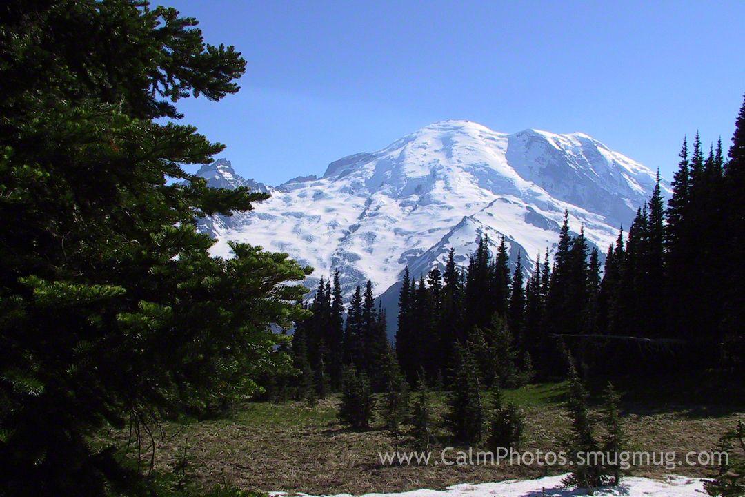 Mt Rainer Washington