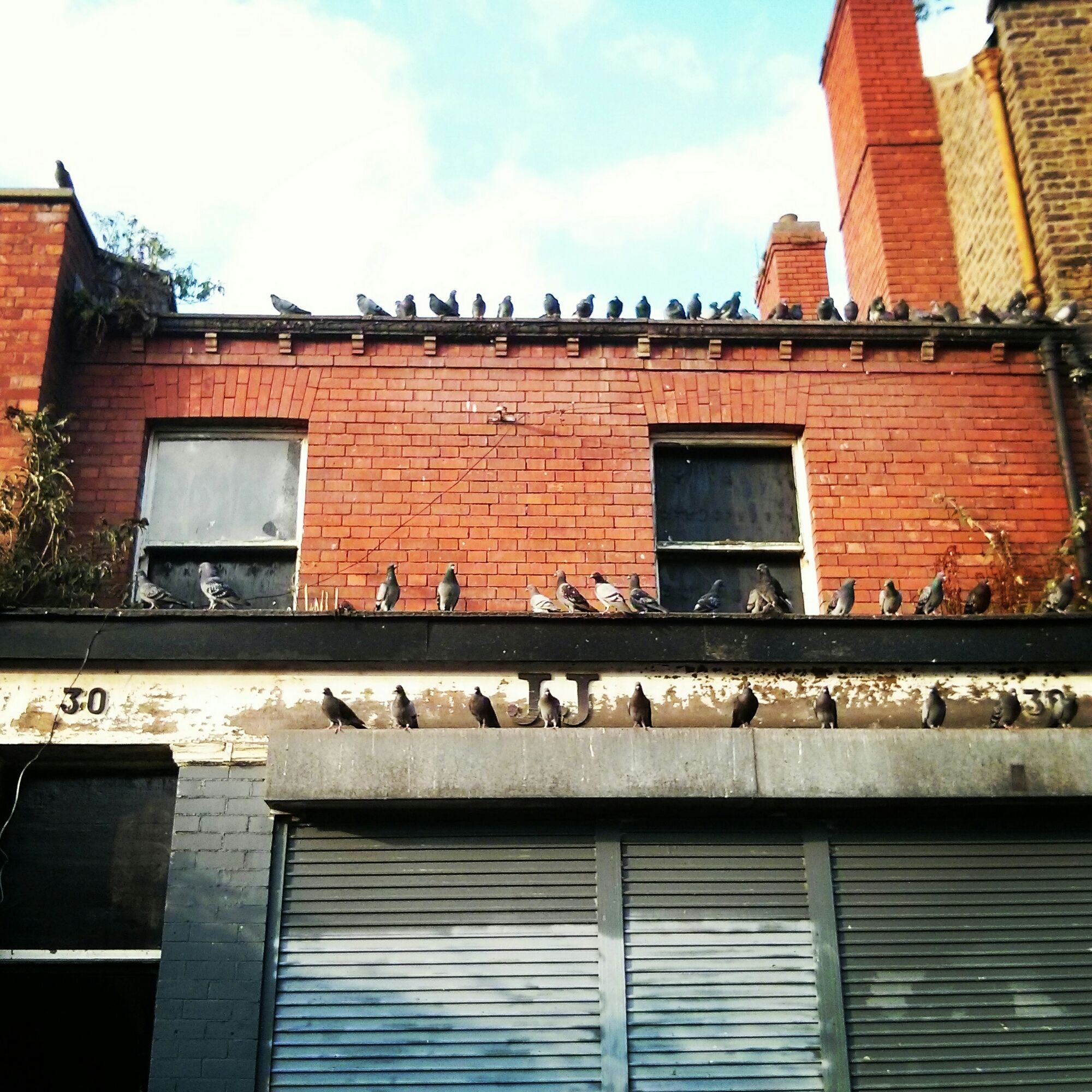 Ghost Signs, Ghost, Dublin