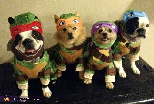 Fun Teenage Mutant Ninja Turtle Dog Costume Pet Halloween