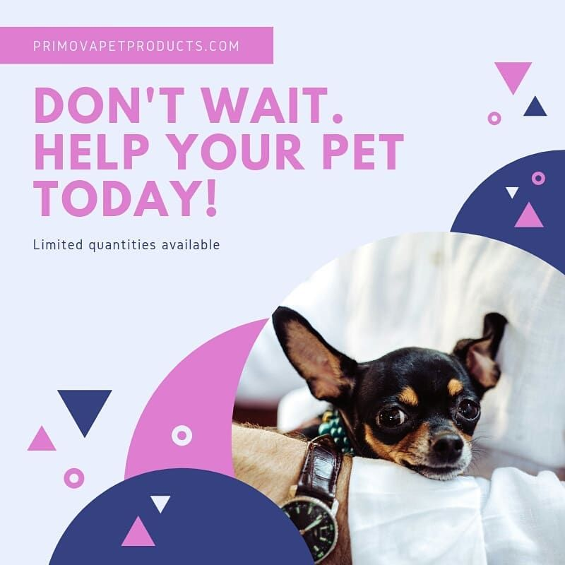 Primova Pet Products Is A Brand Based In Newark Delaware Usa We