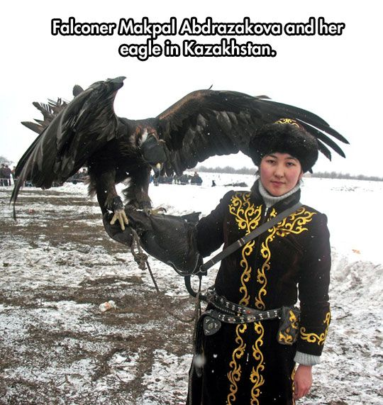 Training Birds Of Prey Eagle Hunter Kazakhstan Eagle