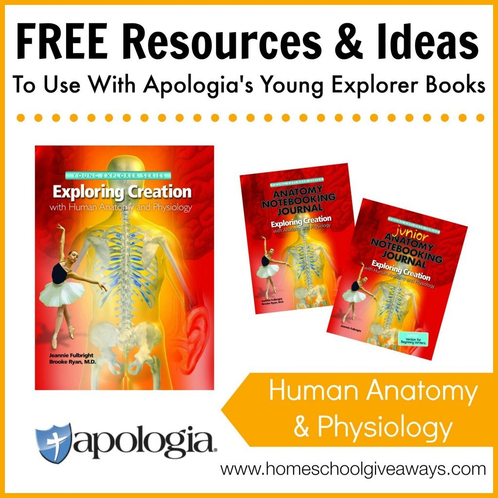 Free Resources and Ideas to Use with Apologia\'s Young Explorer Books ...