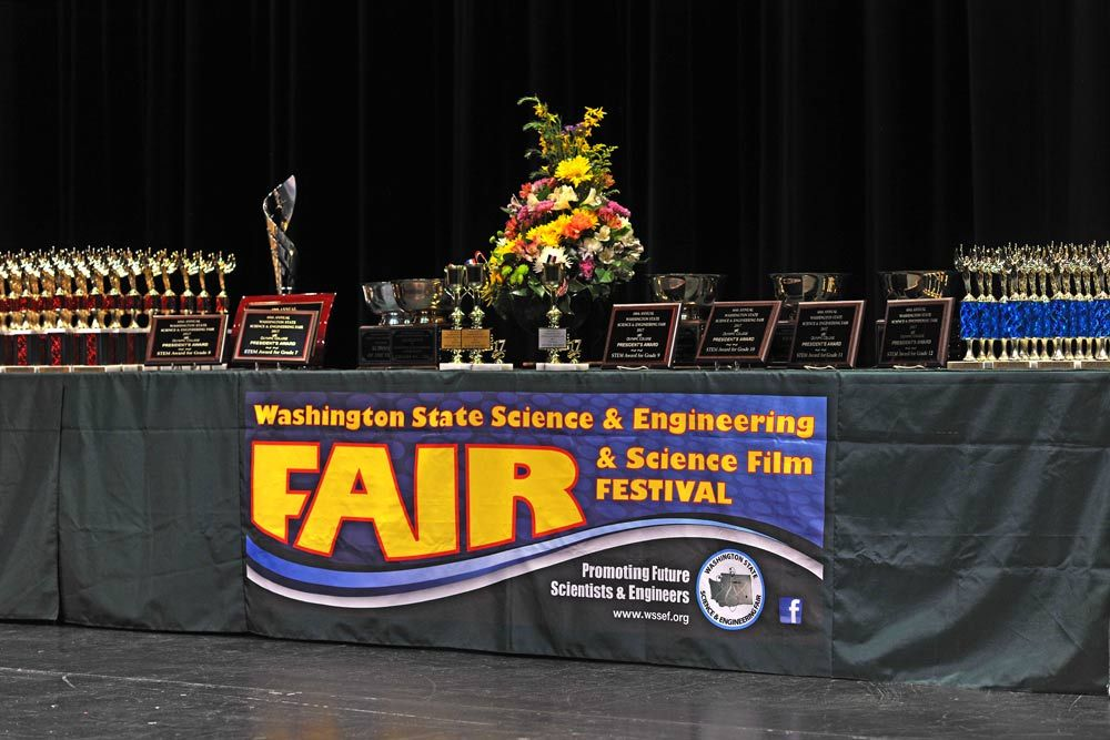 Wssef Inspiring Future Scientists And Engineers With Images