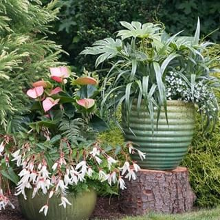 Garden Design Magazine (@gardendesignmag) • Instagram ...