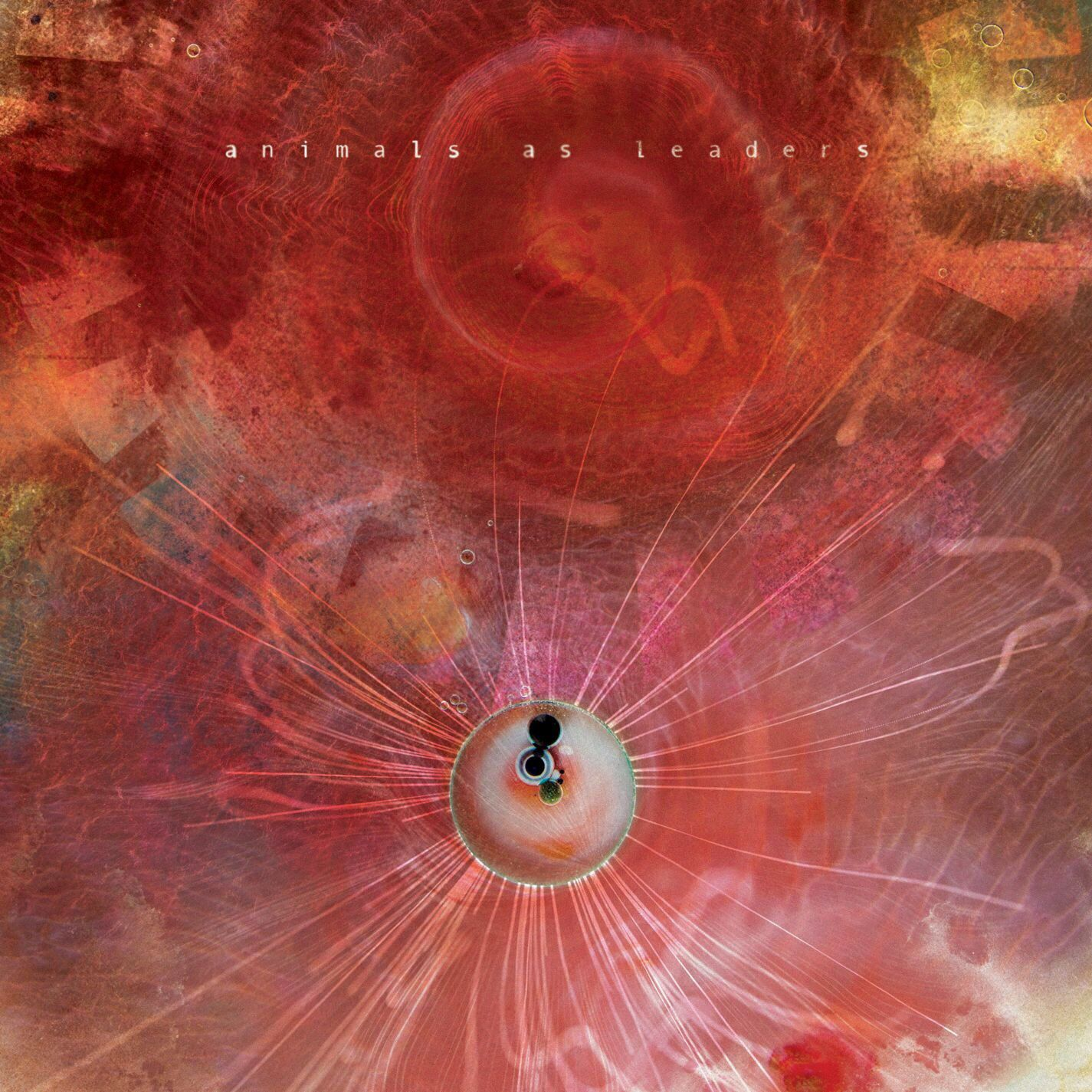 The Joy Of Motion Animals As Leaders Amazing Album Amazing Band Experimental Fotos