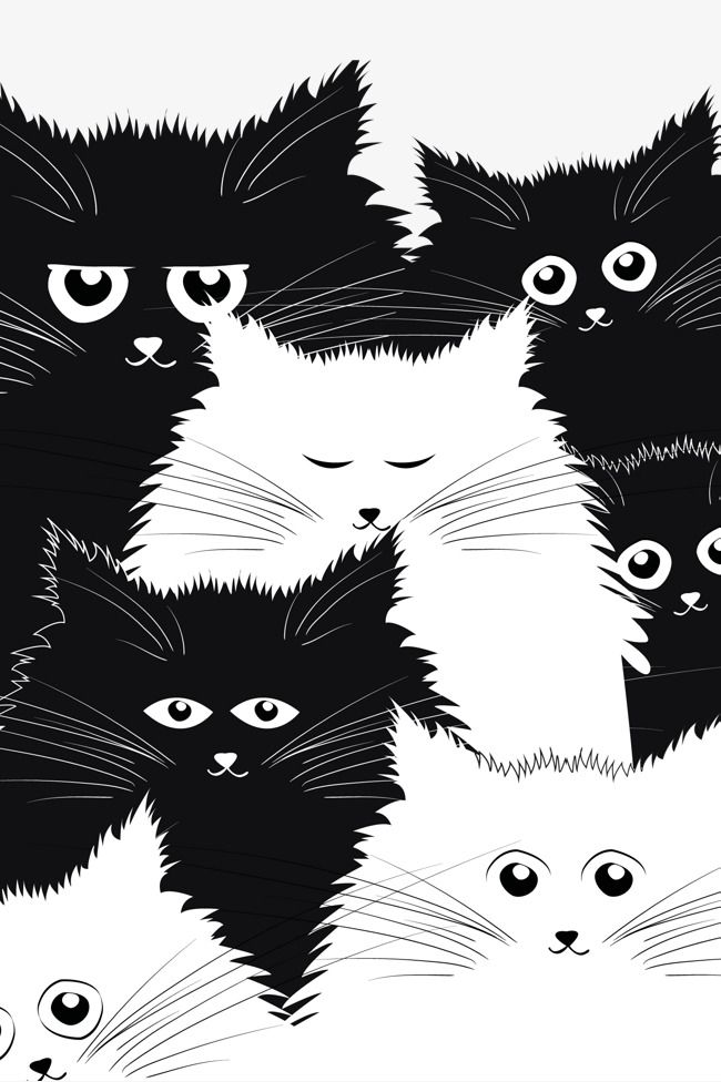 Dibujos animados de gato blanco y negro, Blanco Y Negro, Blanco, CAT ...