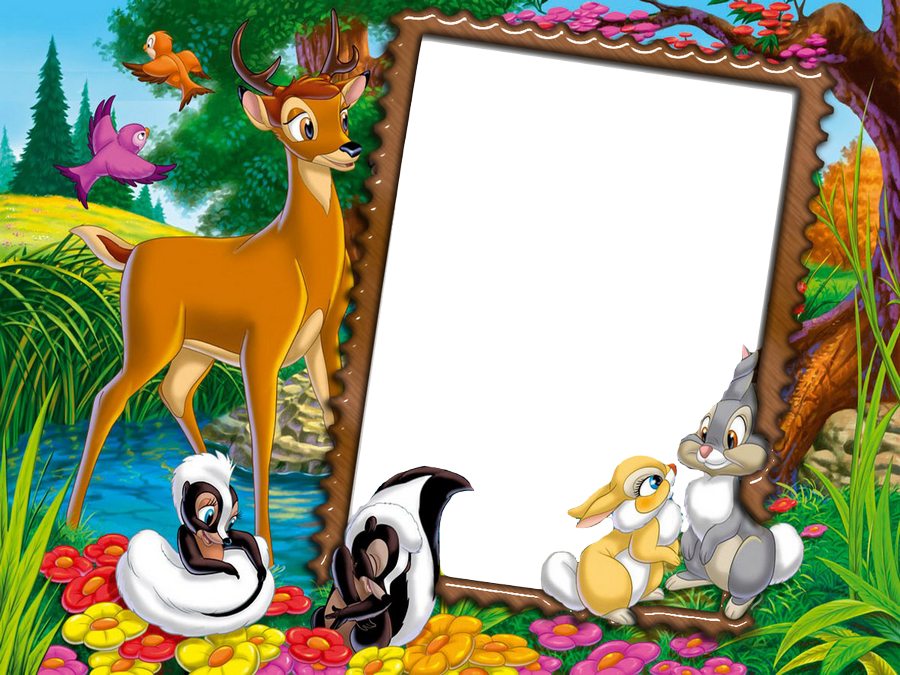 Cute Transparent Kids Photo Frame with Wild Animals | Marcos ...