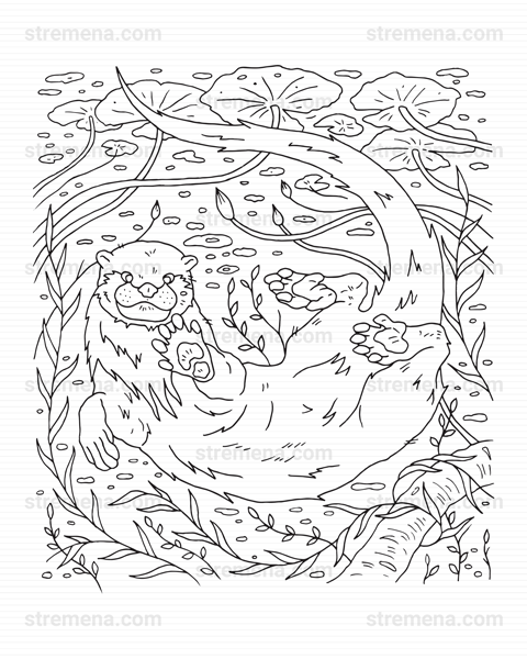Forest Otter Family Cute Printable Coloring Pages PDF in