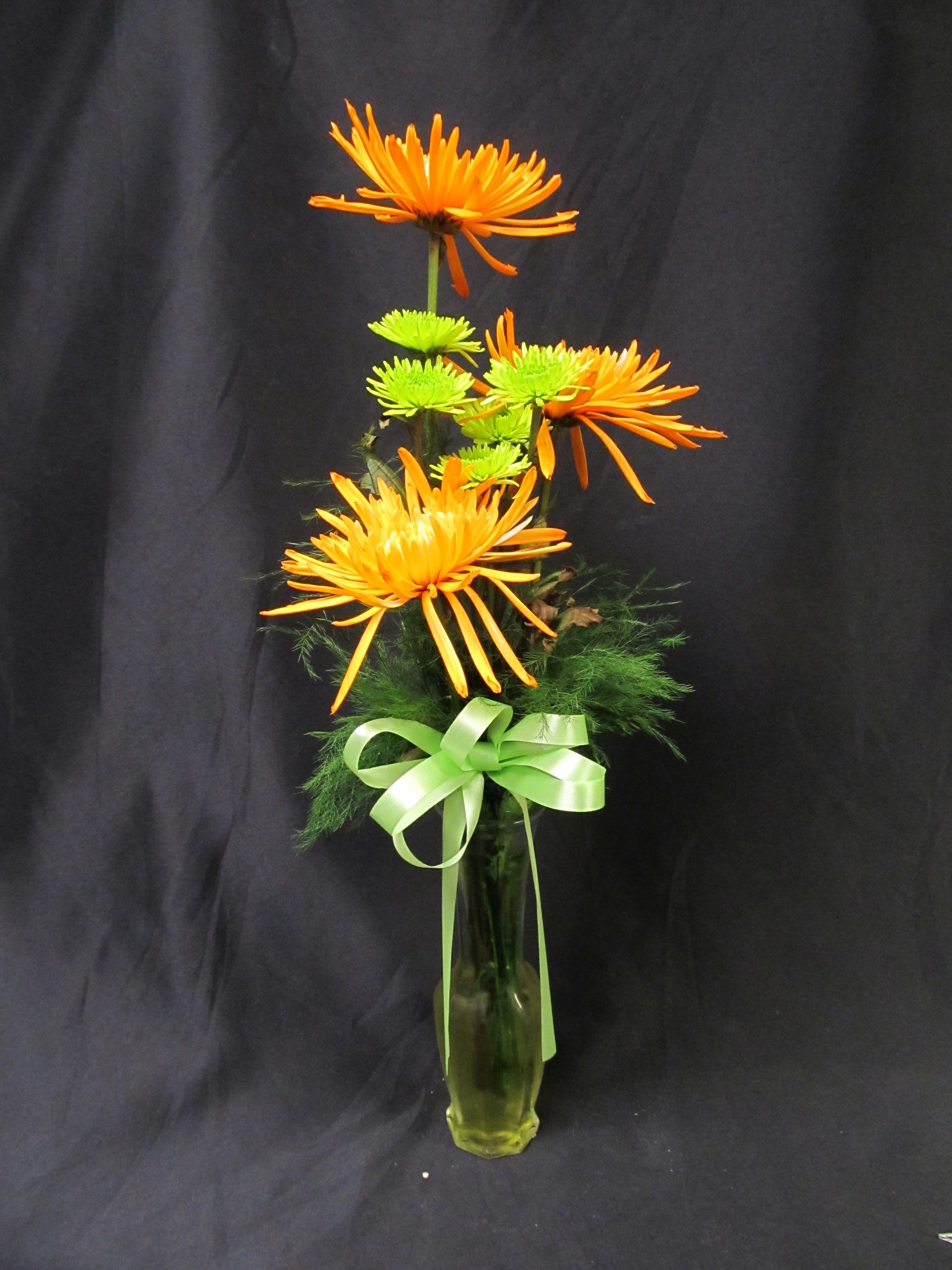 Budvase of spider mums and daisy poms everyday bouquet