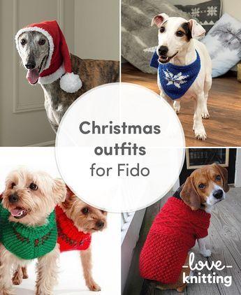 Christmas Outfits For Fido Christmas Jumpers Christmas Knitting