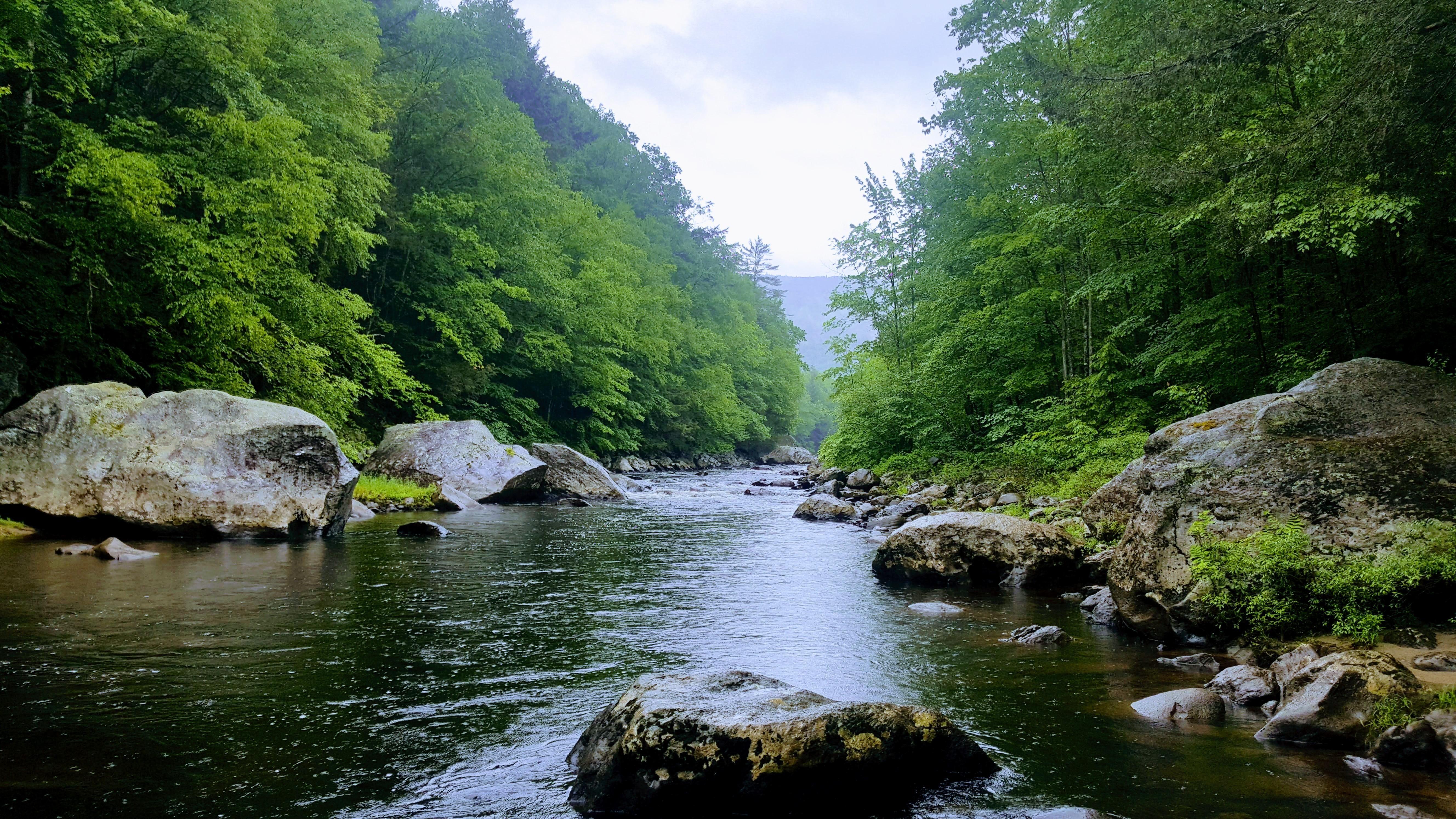Jamaica State Park Jamaica Vt Oc 53122988 Landscape