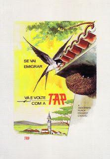 se vai emigrar vá e volte com a tap a andorinha nunca esquece o ninho | 20agetravel portugal