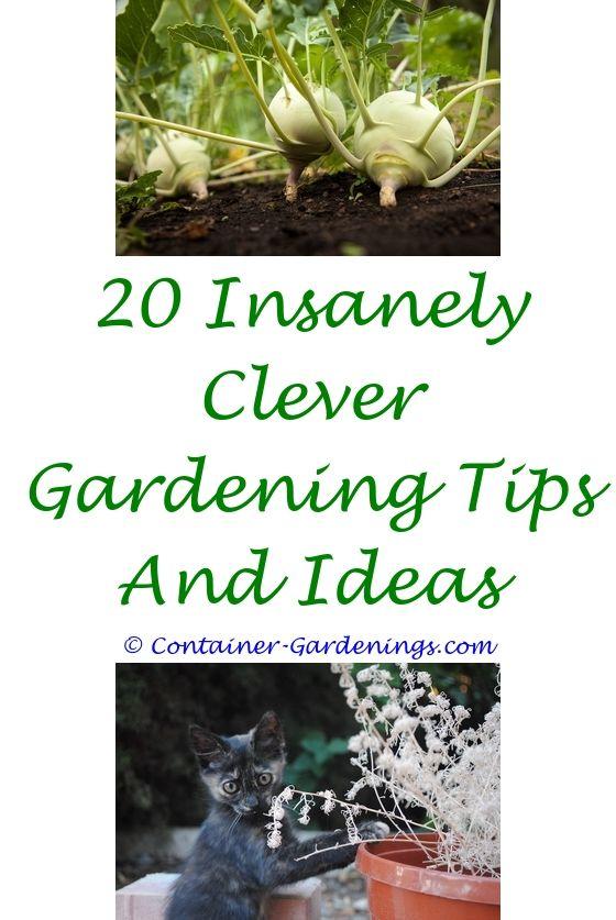 Bon Flower Garden Websites | Garden Ideas, Small Gardens And Vegetable Garden