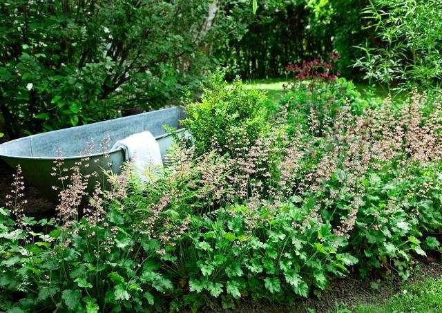 Pulahda kylpyyn puutarhassasi. Sinkkiamme on lämmitettävää kylpypaljua riisutumpi versio, mutta vesi rentouttaa aina. Photo Annika Christensen viherpiha.fi