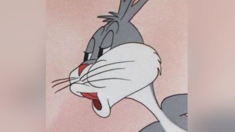 Bugs Bunny S No Bunny Meme Bugs Bunny White Cat Meme