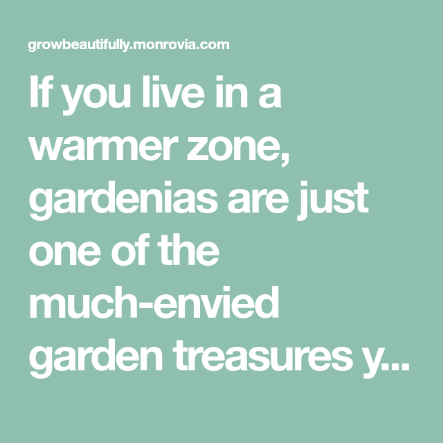If You Live In A Warmer Zone, Gardenias Are Just One Of
