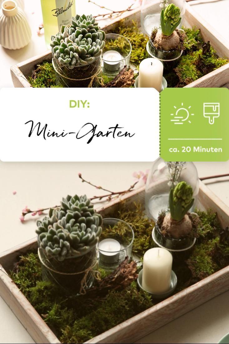 DIY-Mini-Garten