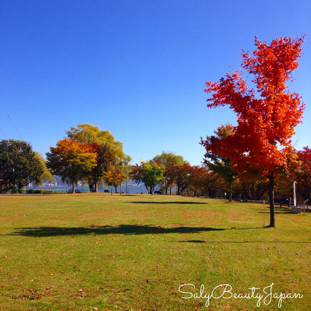 Autumn in Japan. Outono no Japão 2015, Lagoa de Suwa/Nagano.
