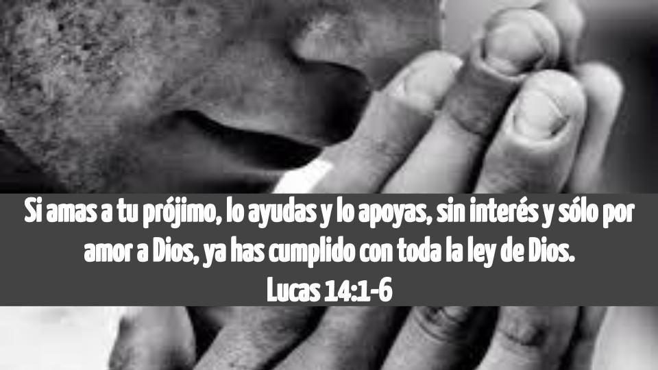Publicaciones En Español Ama A Tu Prójimo Citas Bíblicas Cristianos