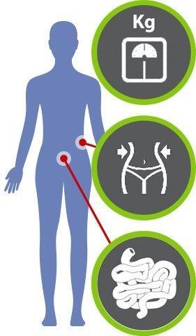 welche lactobacillus zum abnehmen