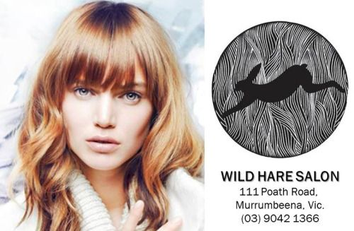 Senior Hairdresser & 1st/2nd Year Apprentice Hairdresser - WILD HARE SALON, Murrumbeena. VIC   WILD HARE SALON is seeking a Senior Hairdresser & 1st/2nd Year Apprentice Hairdresser to join our highly professional Salon.  If you are looking to work in a supportive Salon with ongoing training, reward and recognition, then look no further.  APPLY HERE: http://goo.gl/7i7wJC