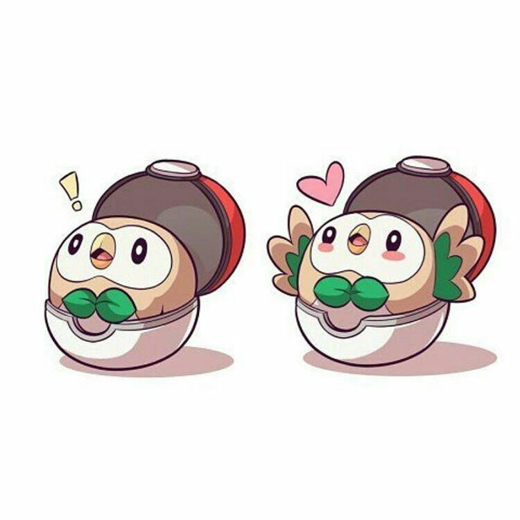 Please Take Care Of Your Rowlet Starter Pokemon Pokemon