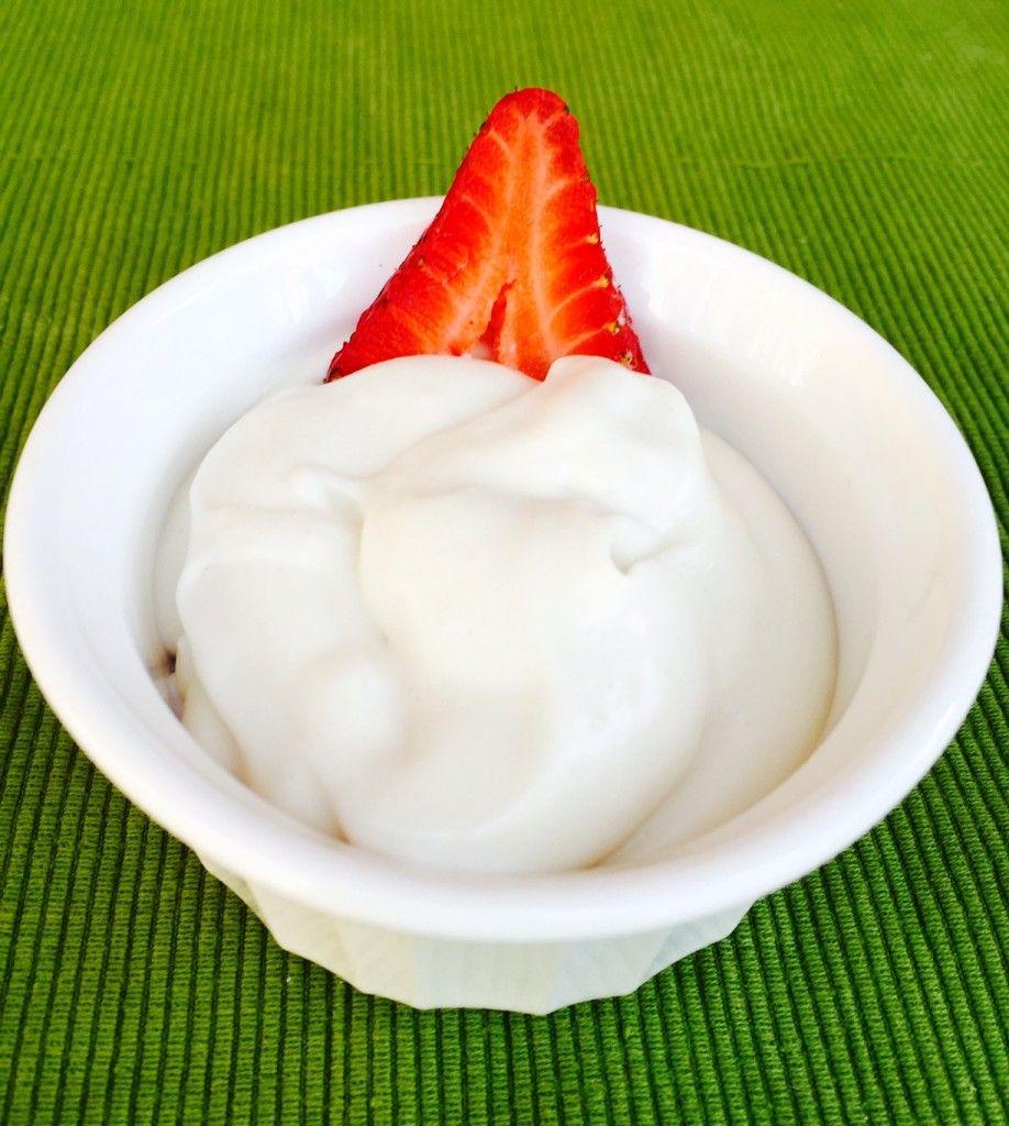 EASY How to Make Homemade Coconut Milk Yogurt Coconut