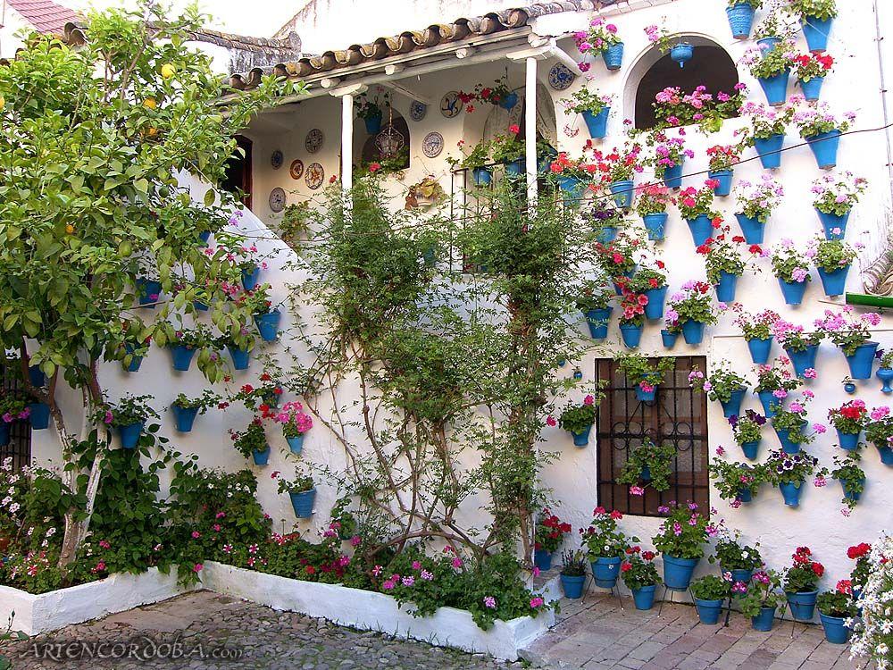 Cordoba spain patio los patios cordobeses est n for Patios decorados