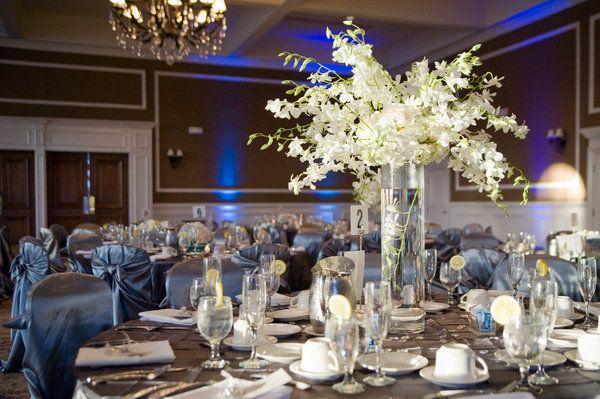 Flowers, Reception, White, Centerpiece, Blue, Brown, Decor, Linen ...