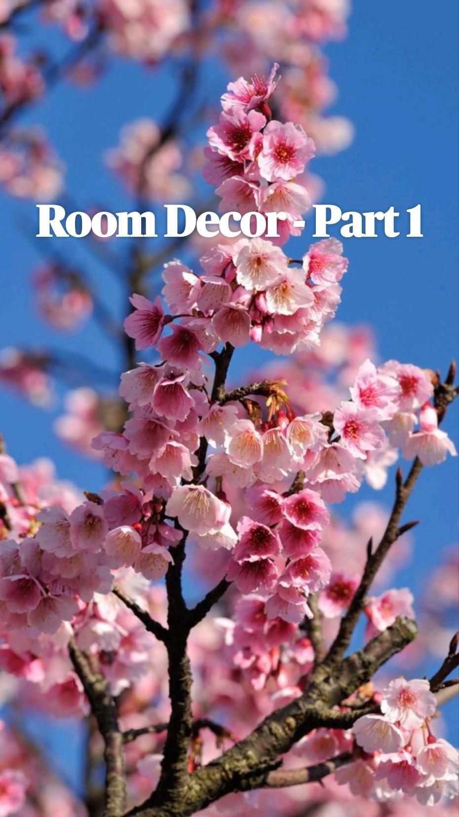 Room Decor - Part 1
