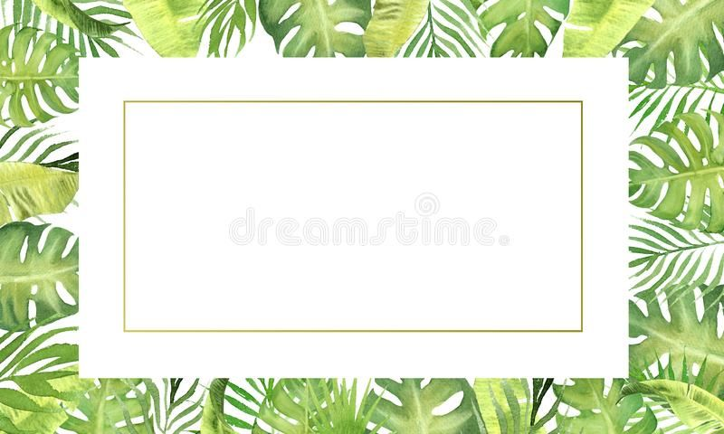 Watercolor Border Frame Green Tropical Leaves Monstera Palm Tree
