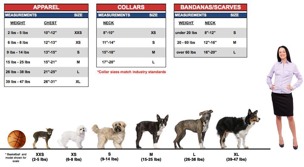 Dog Collar Sizing Chart Via Petsmart Com Chihuahua Diy Dog Collar Diy Dog Stuff Dog Collar Size