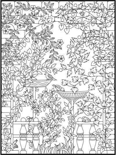 Hidden Garden An Adult Coloring Book