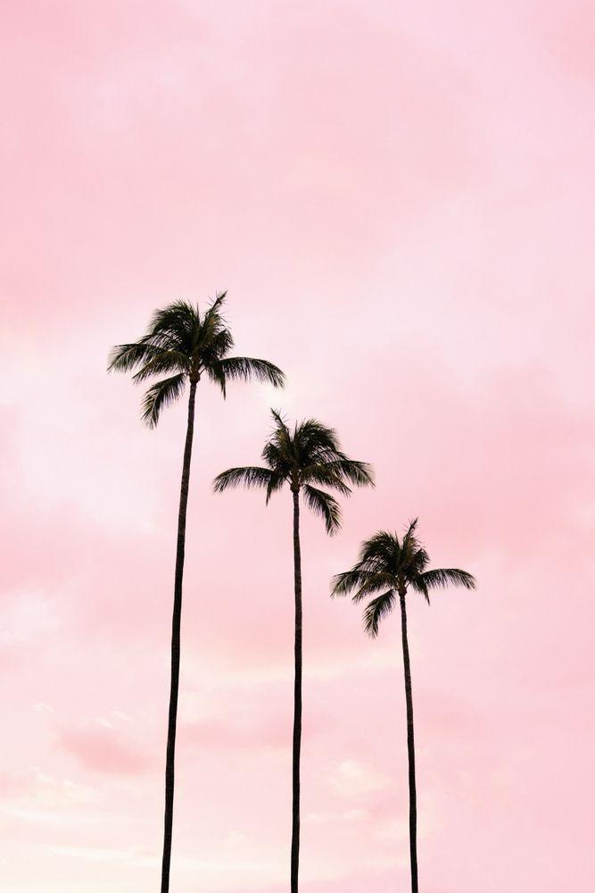 Miami | Paul Landry Co.