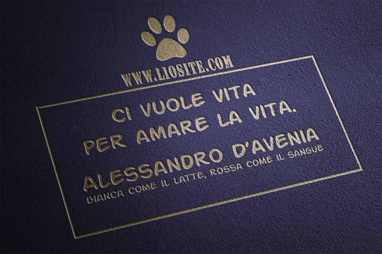 """Innegabile!  """"Ci vuole vita per amare la vita.""""  Alessandro D'Avenia - Bianca come il latte, rossa come il sangue  #alessandrodavenia, #vita, #amoreperlavita, #vivere, #graphtag, #italiano,"""