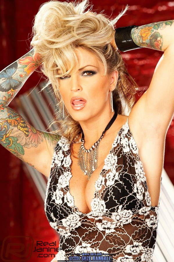 Apologise, but, janine lindemulder porn star