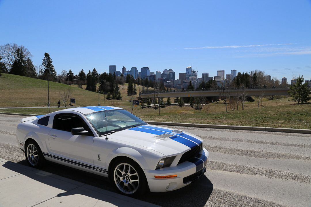 Calgary spring Ford mustang, Mustang, Bmw car
