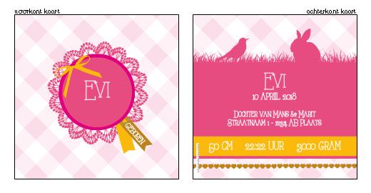 Lief geboortekaartjes met broche!  www.geboortekaartjesdrukkerij.nl #geboortekaartjes, #geboorte, #kaartjes, #zelfontwerpen, #ontwerpen, #uniek, #meisje, #zwanger, #baby, #ruitje #beestenboel, #dieren #roze