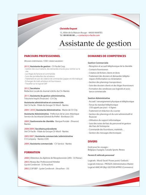 cv professionnel original