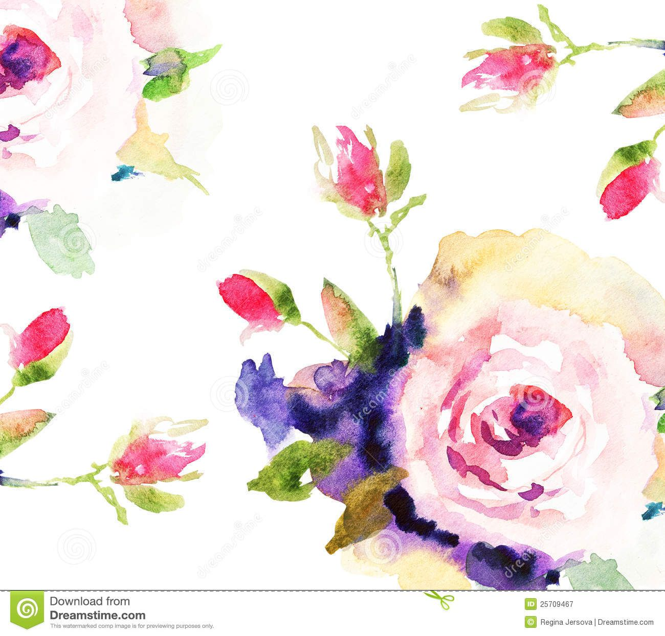 Watercolor Rose Roses Ilration