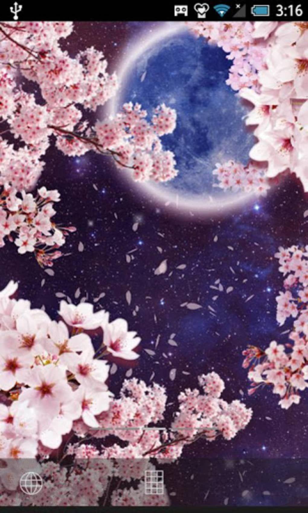 月桜ライブ壁紙 For Android ダウンロード 植物のスケッチ 桜の壁紙 桜イラスト