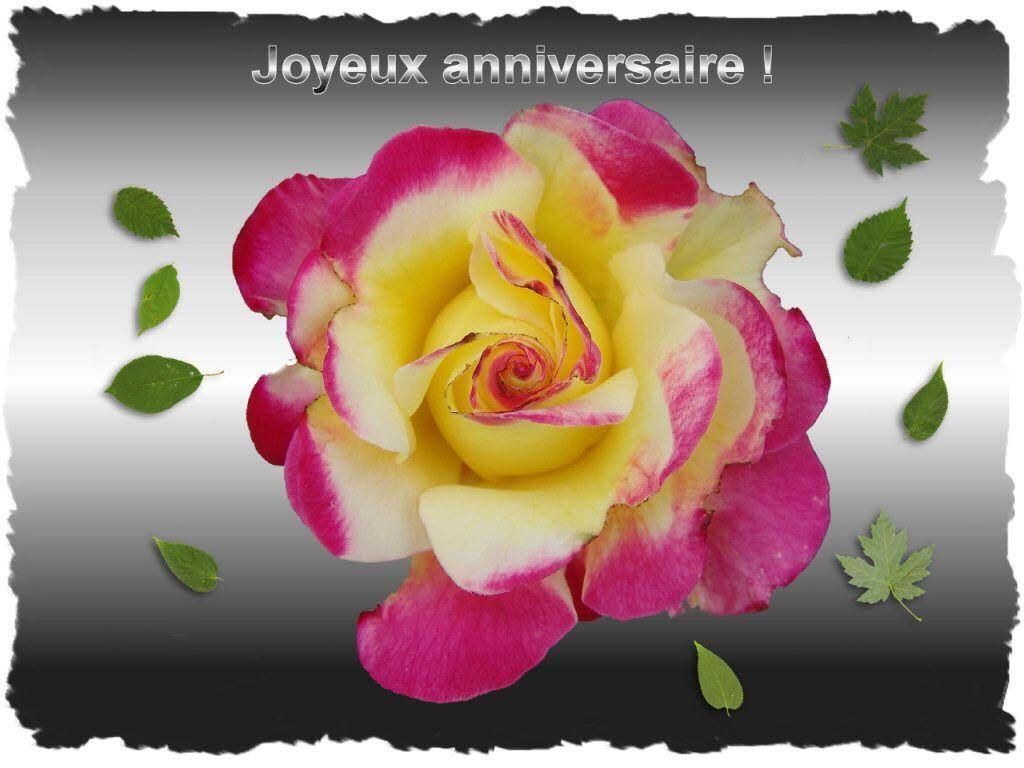 Epingle Sur Joyeux Anniversaire Fleurs